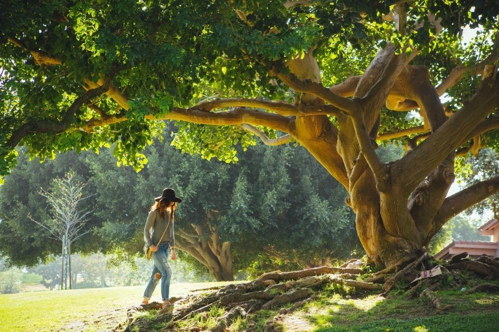 nature and health ile ilgili görsel sonucu